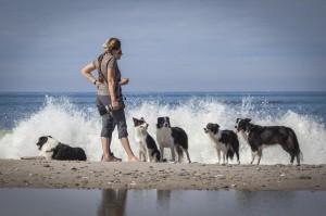 Macey-border-collier-flok-familie-vesterhavet-bølger_2048x1361
